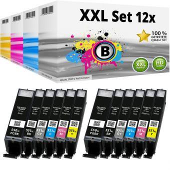 Alternativ Canon Druckerpatronen Set 12x PGI-550 CLI-551 (mit chip)