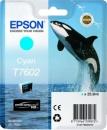 Original Epson Patronen Killer Wal T7602 Cyan