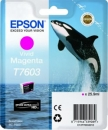 Original Epson Patronen Killer Wal T7603 Magenta