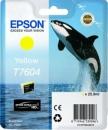 Original Epson Patronen Killer Wal T7604 Yellow / Gelb