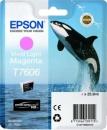 Original Epson Patronen Killer Wal T7606 Fotomagenta