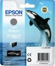 Original Epson Patronen Killer Wal T7607 Fotoschwarz