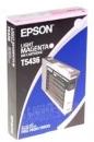 Original Epson Patronen T5436 Foto Magenta